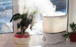 あなたのオフィスに加湿器はありますか?乾燥のリスクと対処法